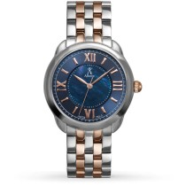Allurez Women's Blue Mother of Pearl Dial Two-Tone Boyfriend Watch