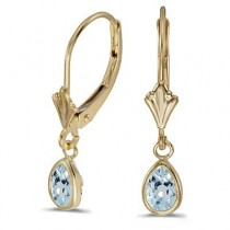 Aquamarine Dangling Drop Lever-Back Earrings 14K Yellow Gold (0.70ct)