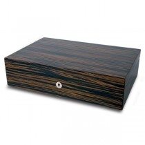 Rapport London Macassar Wood Ten Watch Box Storage